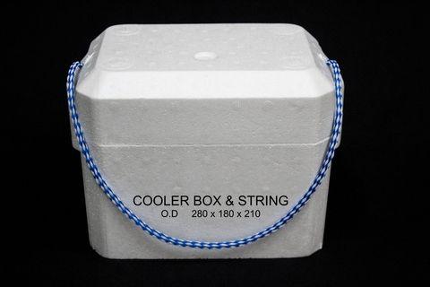 Styrofoam Cooler Bags Style Guru Fashion Glitz